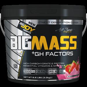 BİGJOY BigMass Gainer GH FACTORS 3000 gr